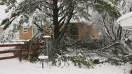 Stock Video Footage of Snowstorm damage to tree and fence.