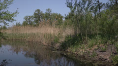 Marshes - boat go for a row in Ukraine Stock Footage