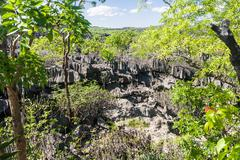 the tsingy of ankarana - stock photo