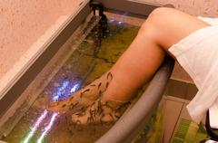 fish spa pedicure - stock photo