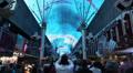 Light Show at Fremont Street Experience featuring Freddie Mercury, Las Vegas HD Footage