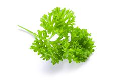 parsley on white background - stock photo