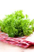 green parsley - stock photo