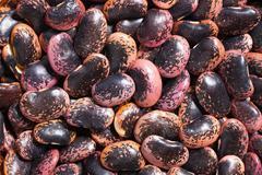 color beans background - stock photo