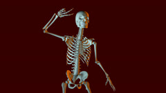 dancing skeleton animation - stock footage
