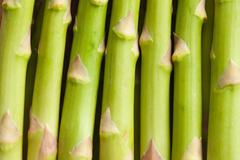 detail of fresh green asparagus - stock photo