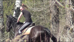 horseback riding, spring, wind, wood, field, a young couple - stock footage