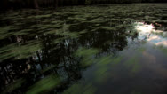 Stock Video Footage of osc1 02 reflection sky bayou