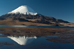 Andean volcano parinacota Stock Photos