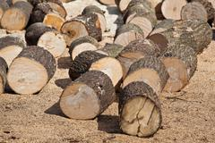 wood chunks - stock photo