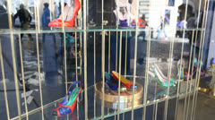 Shoes on store display in Rome - stock footage