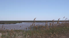 Steppe and sea Stock Footage