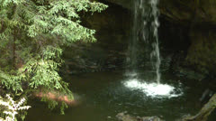 Waterfalls in the Red Woods Stock Footage