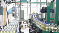 Sunflower oil factory - stock footage