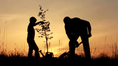 Father and son planting a tree. Sunrise. Silhouette. Spring. - stock footage