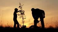 Stock Video Footage of Father and son planting a tree. Sunrise. Silhouette. Spring.