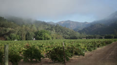 Spectacular landscape surrounding the wine growing region of Napa Valley Stock Footage