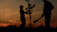 Father and son planting a tree. Sunrise. Silhouette. Spring. Stock Footage