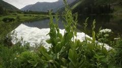 (1290) Serene looping summer mountain lake scene - Aspen Colorado Rockies Maroon Stock Footage