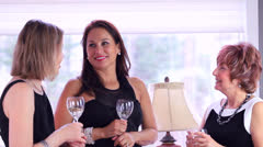 Cocktail Party Conversation Stock Footage