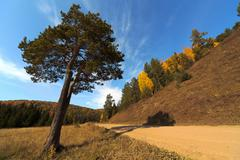 Autumn, hdri Stock Photos