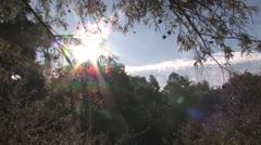 osc2 06 sunrays - stock footage
