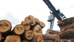 The timber storage Stock Footage