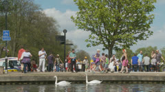 Bank holiday Monday, Newbury (14) UK Stock Footage