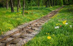 Traintracks through romantic forest Stock Photos