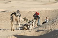 Sahara camels Stock Photos
