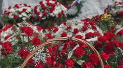 Pink carnation in baskets for Victory Day in Russia Stock Footage