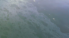 Toxic Fuel Oil Slick on Polluted Harbor Waters Stock Footage