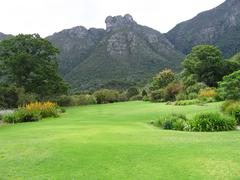 Garden of Kirstenbosch in South Africa - stock photo