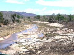 Low River in Kreuger National Park in South Africa - stock photo