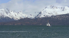 Sailboat on Beam Reach with Snowy Mountains and Gulls Stock Footage