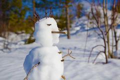 portrait of a snowman - stock photo