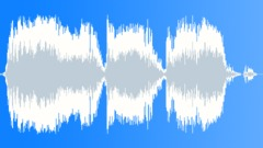 Military Radio Voice 55a - Mission Accomplished - sound effect