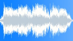 Military Radio Voice 55b - Mission Accomplished - sound effect