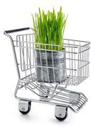 Ecological grocery shopping Stock Photos