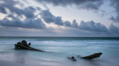 Tree in the Ocean Timelapse Stock Footage