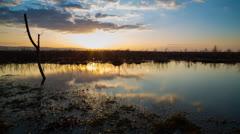 Sunset Timelapse Marsh Stock Footage