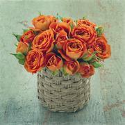 orange roses on wooden background - stock photo