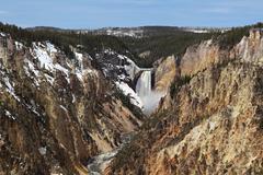 Yellowstone national park - lower falls Stock Photos