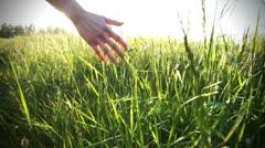 Hand on grass Stock Footage