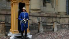 Female guard, royal castle, Stockholm Stock Footage