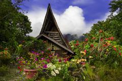 flowers on background of batak style house. - stock photo