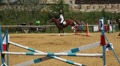 sport show jumping 7 HD Footage
