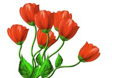 Red flowers on a white background Stock Illustration