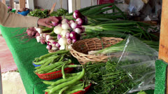 Shopper examines the fresh vegetables in the Farmers market Stock Footage