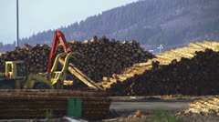 Grapple Loader and Yarder Working in Logging Deck Stock Footage